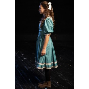 Bustle/Turn of the Century – Women's Full Outfit,  Green and Pink