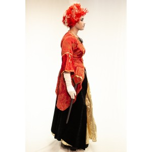 Queen of Hearts Costume 1