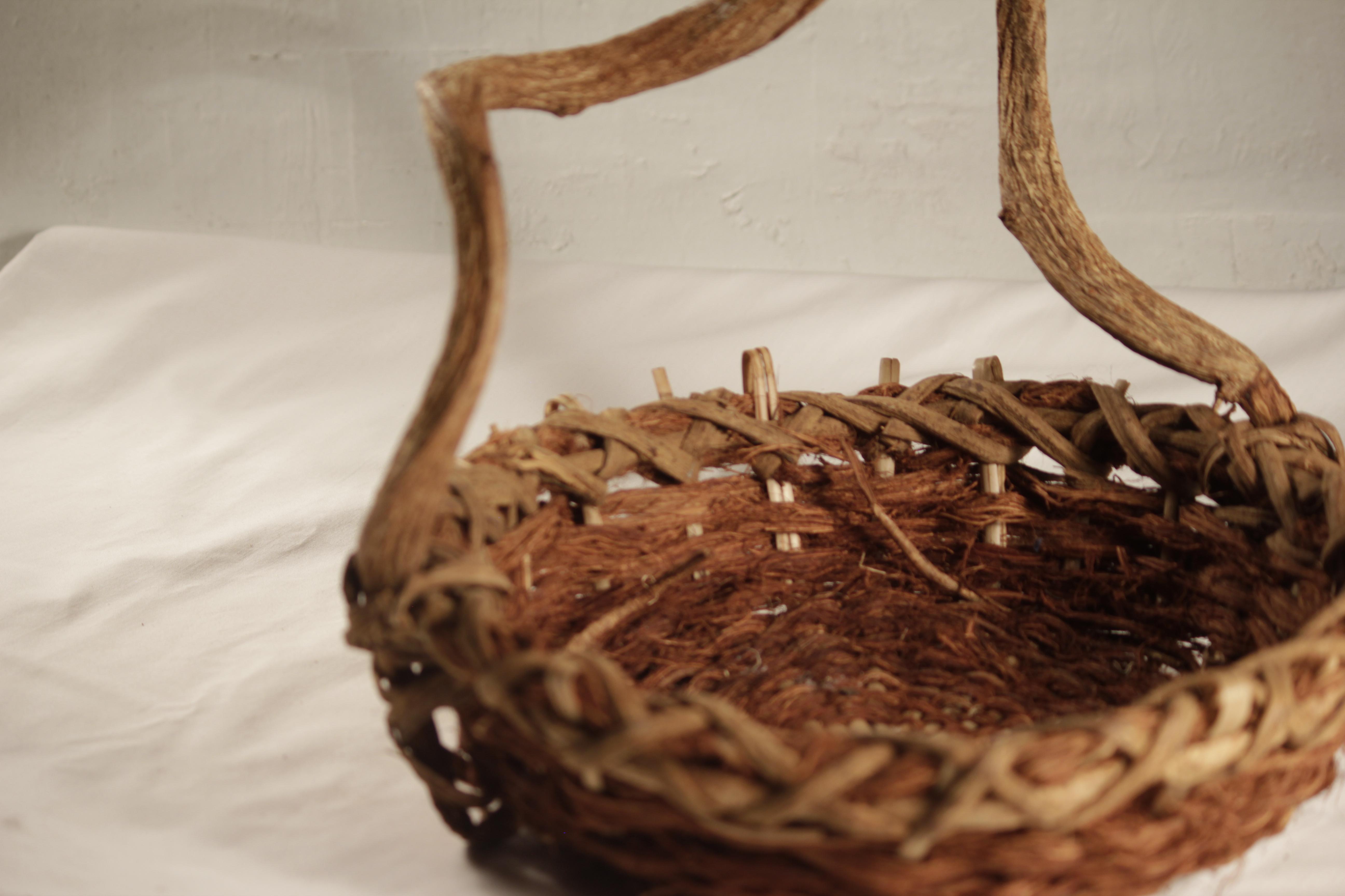 Basket, Gnarled Handle