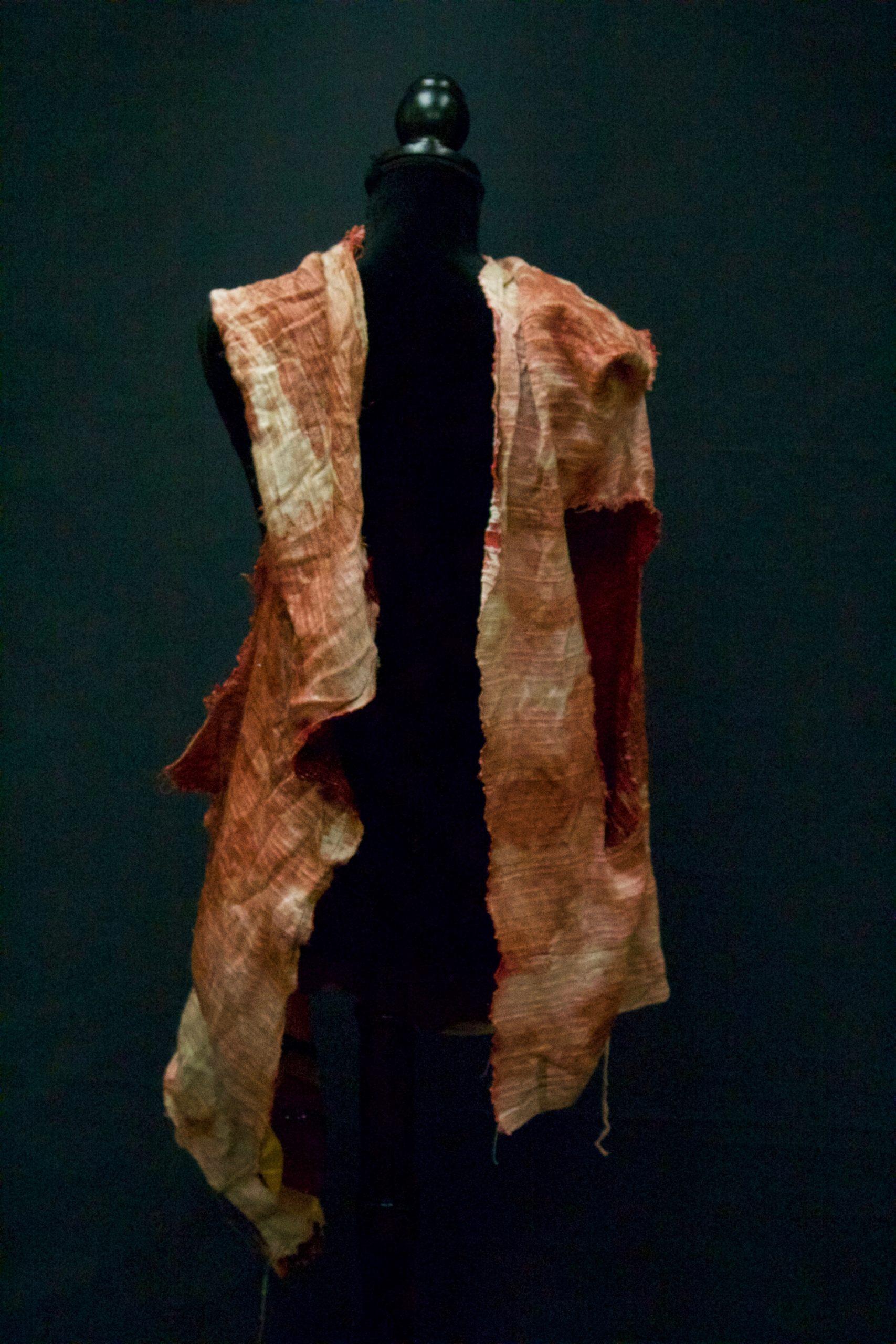 Joseph Bloody Coat