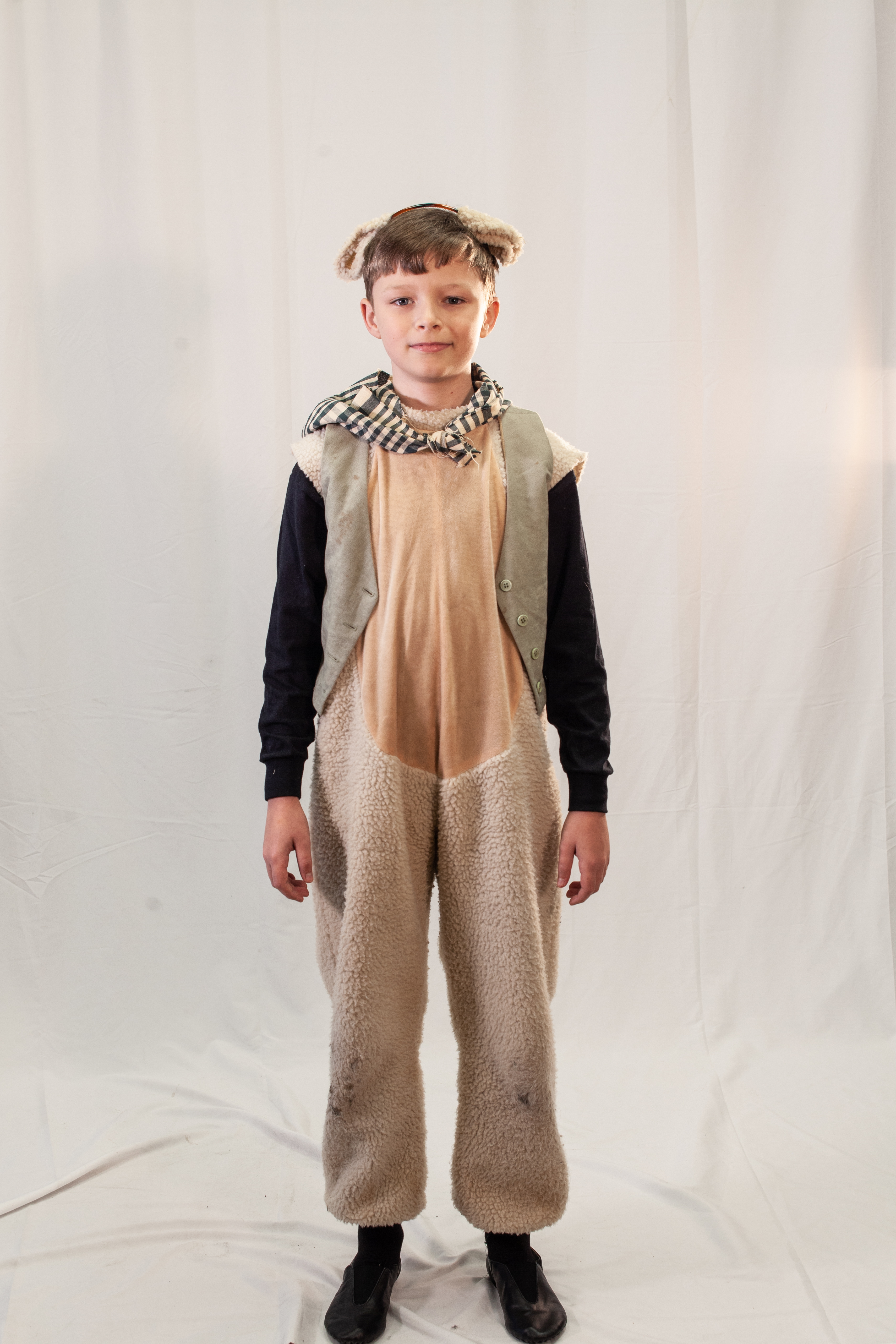 Boy Who Cried Wolf Sheep 1