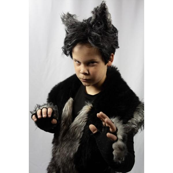 Boy Who Cried Wolf Wolf