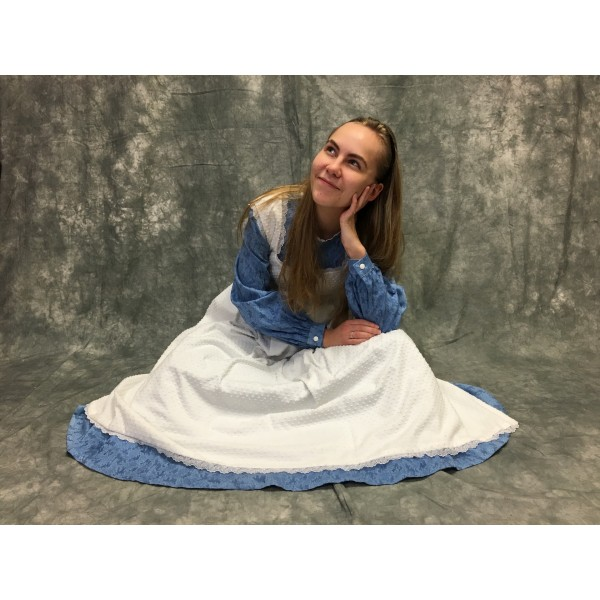 Alice Costume vs2