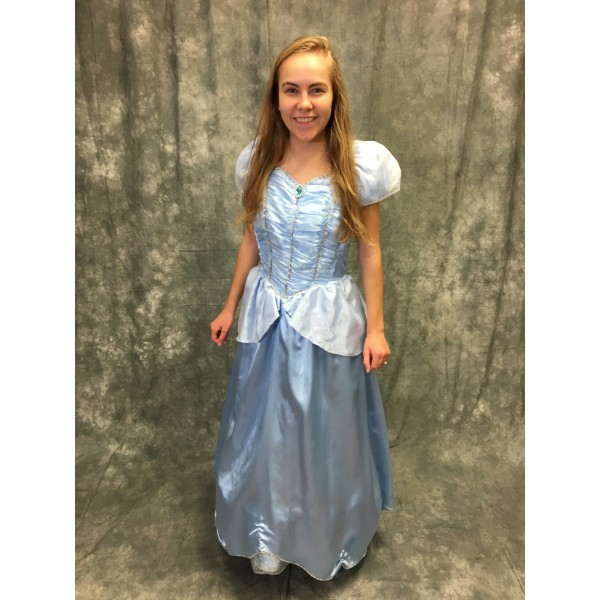 Cinderella Costume vs2