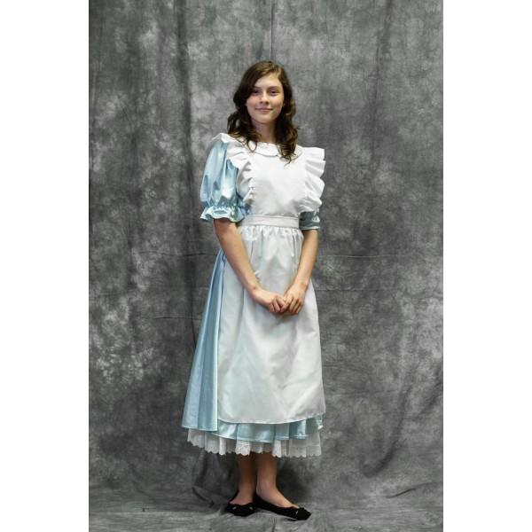 Alice Costume vs1