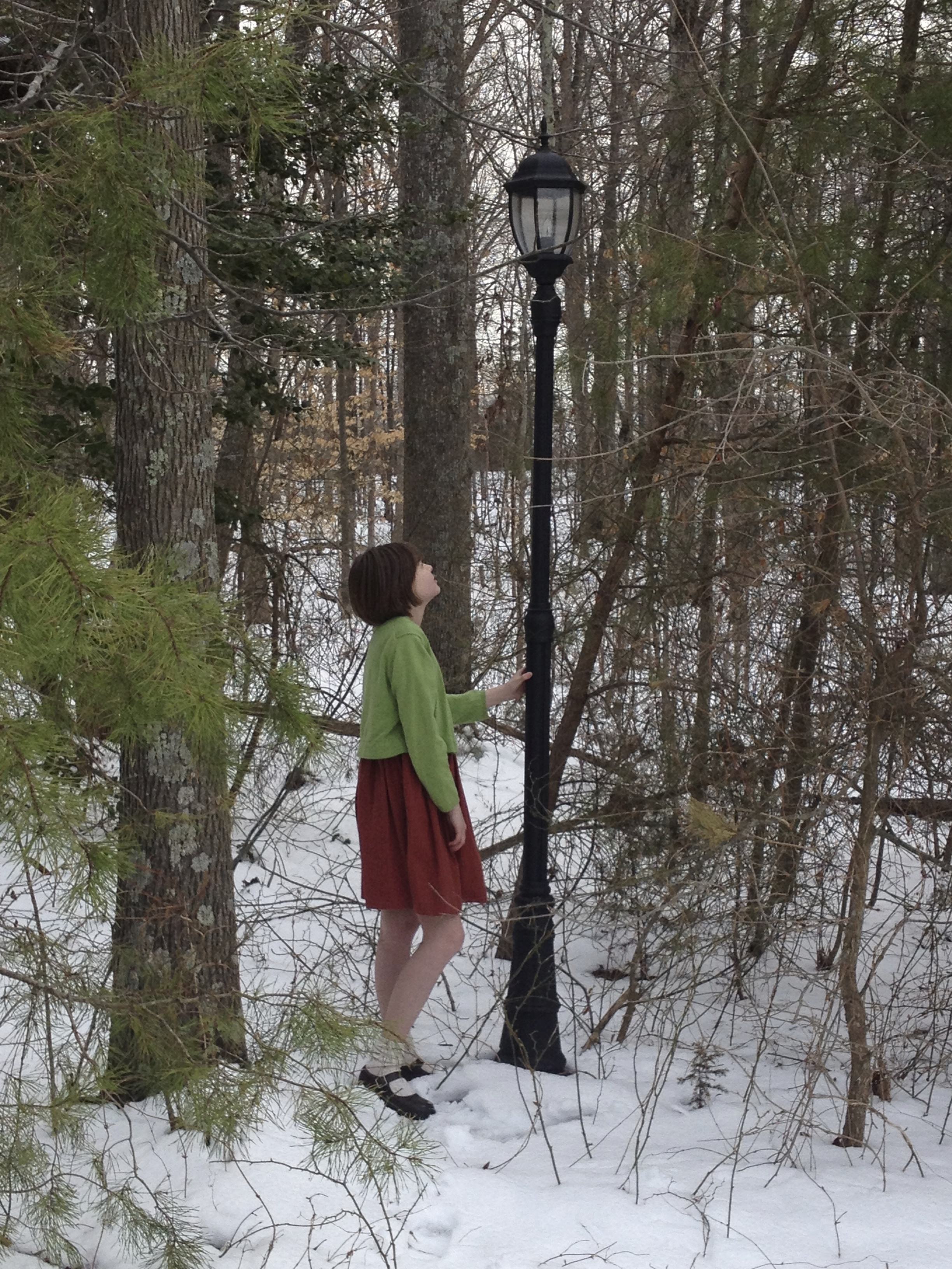 Lamppost, LWW Narnia vs2