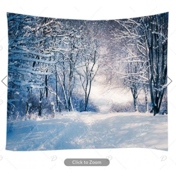 Snow Path Backdrop
