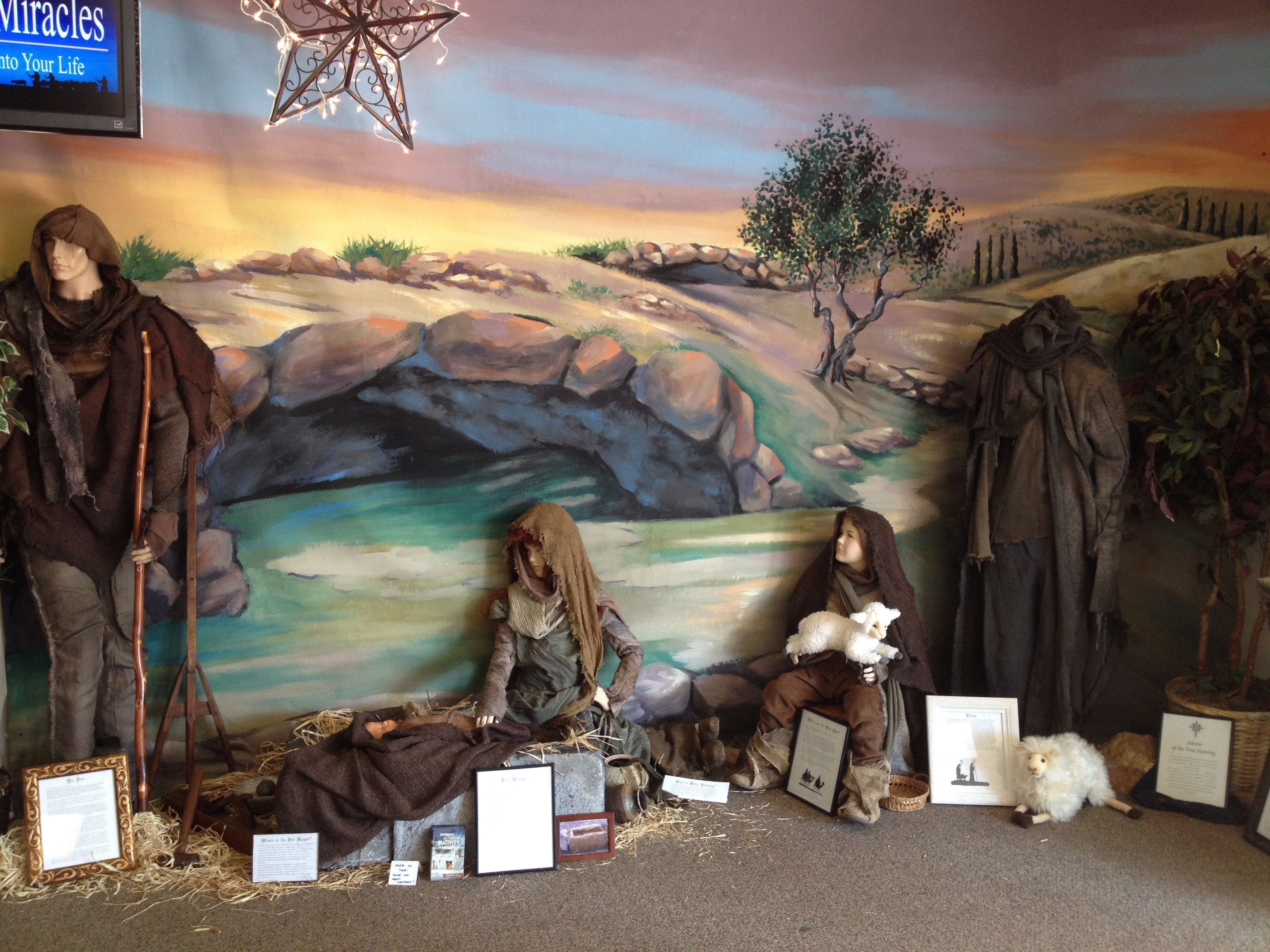 Nativity Backdrop