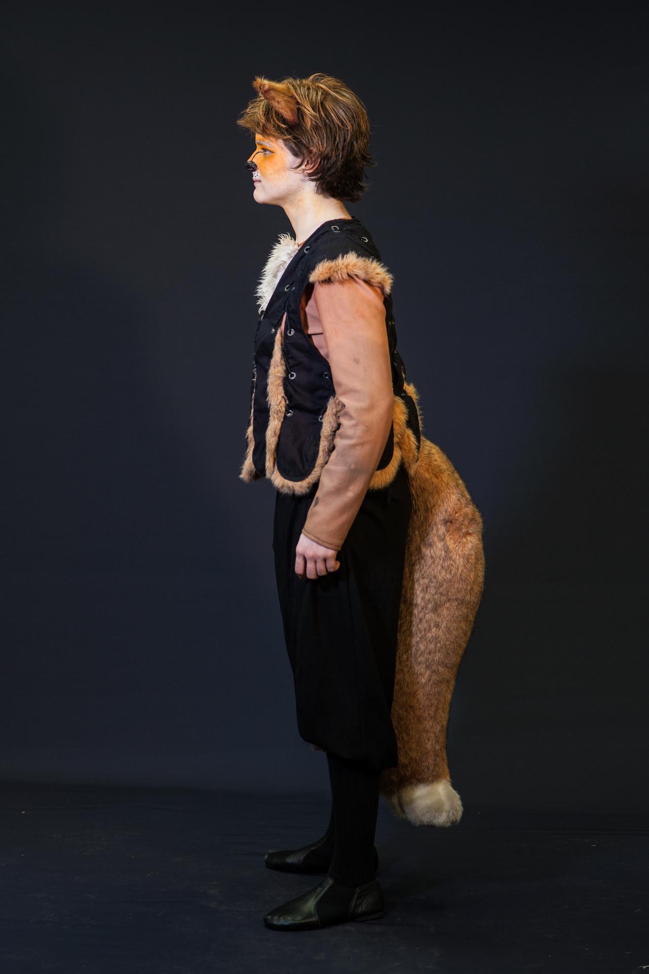 Narnia, LWW PC HHB Fox Male