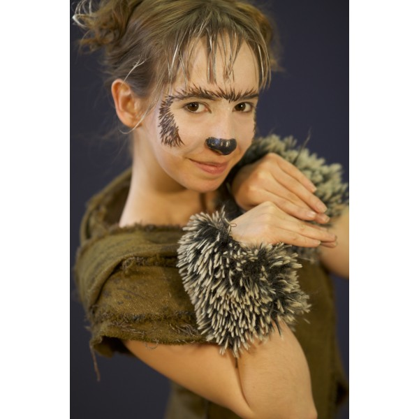 Narnia, HHB Hedgehog