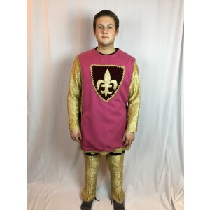 Medieval Outfit, Pink and Gold