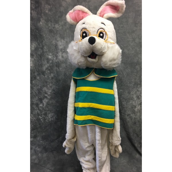 Alice Late Rabbit Mascot Suit